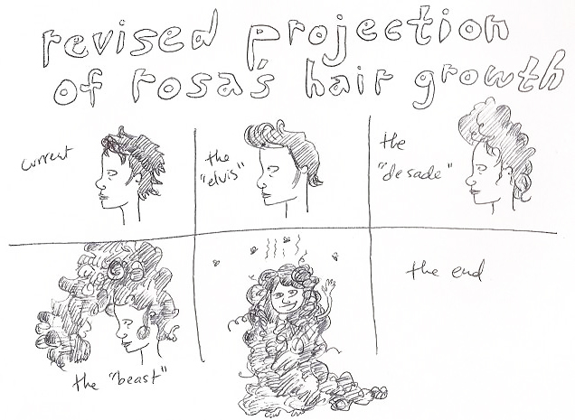 """""""Revised Projection of Rosa's Hair Growth"""""""